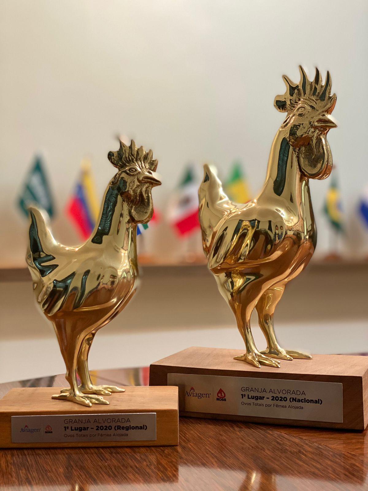 Grupo Alvorada conquista o prêmio de melhor lote da Aviagen com o ROSS 308 AP, na categoria ovos totais por ave alojada